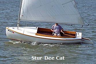 Cat333b